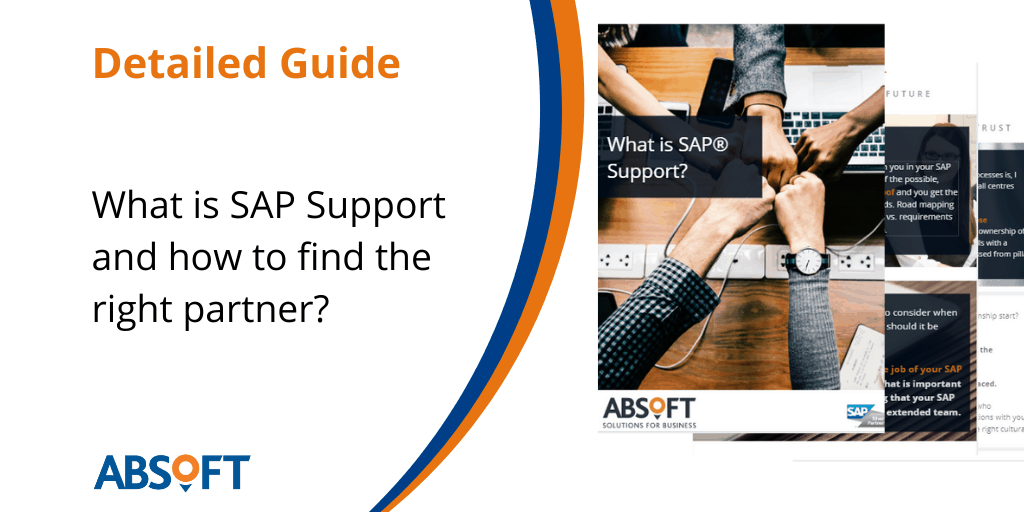 What is SAP Support
