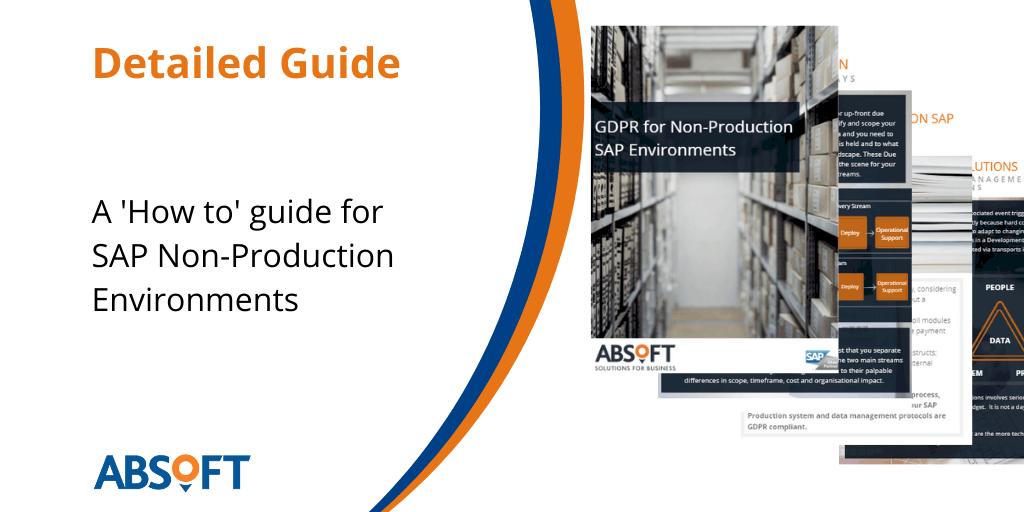 SAP Non-Production Environments